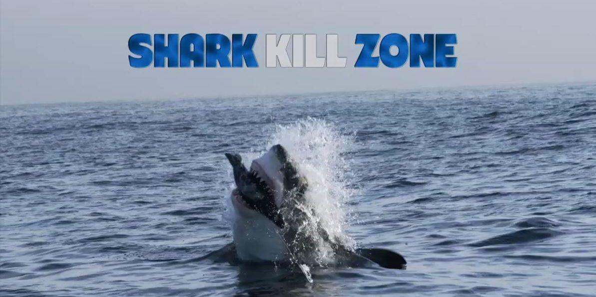 SharkKillZone_TitleStill