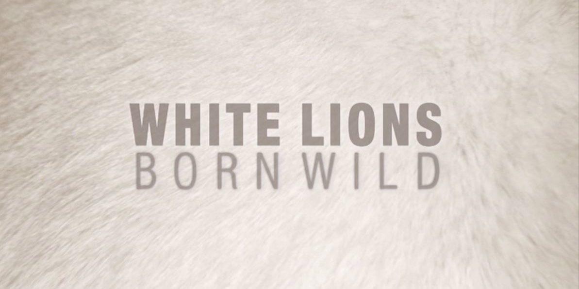 WhiteLions_TitleStill